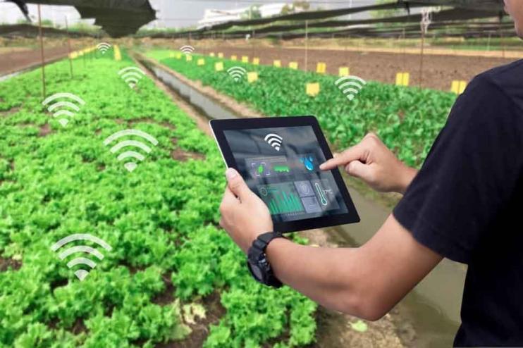 Ứng dụng IoT trong nông nghiệp Công nghệ cao smart farm